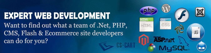 web-development-banner